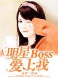 明星Boss爱上我