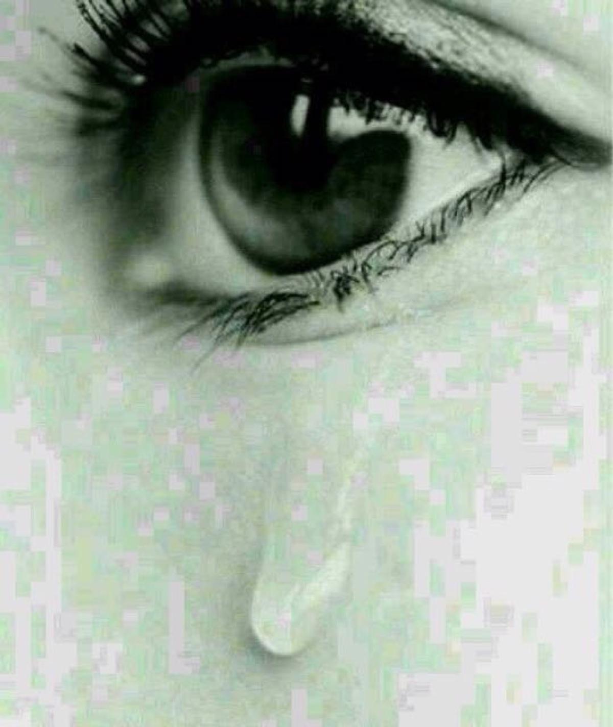 西北风没有眼泪