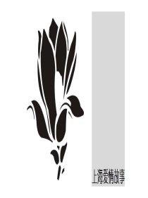 上海爱情故事