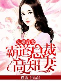 先婚后爱:霸道总裁高知妻