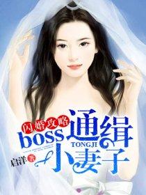 闪婚攻略:boss通缉小妻子