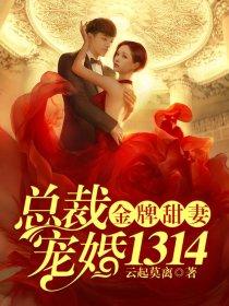 金牌甜妻,总裁宠婚1314