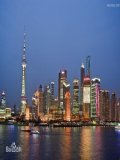 上海城里的姑娘们