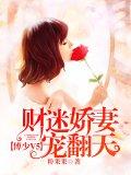 傅少V5:財迷嬌妻寵翻天